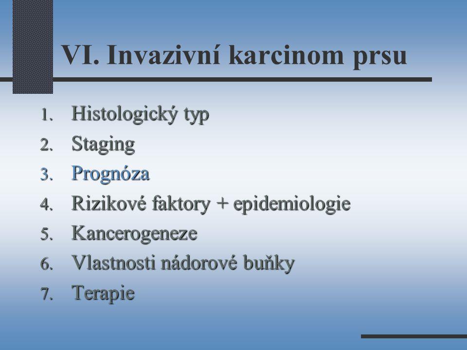 VI. Invazivní karcinom prsu
