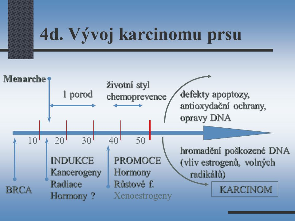 4d. Vývoj karcinomu prsu Menarche životní styl chemoprevence 1 porod