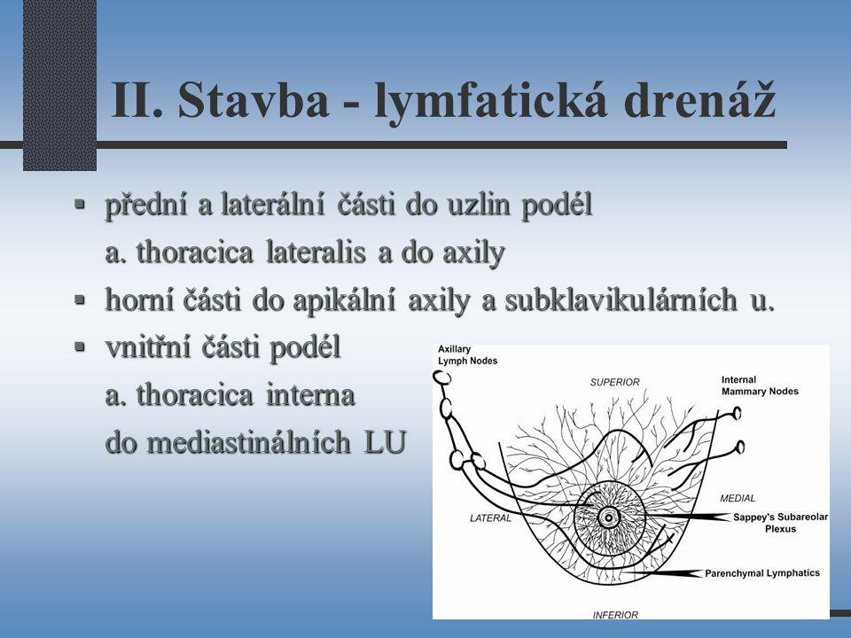 II. Stavba - lymfatická drenáž