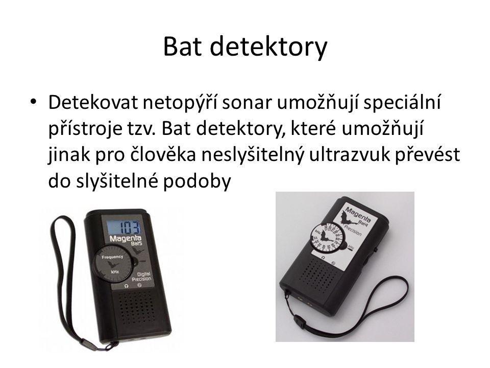 Bat detektory