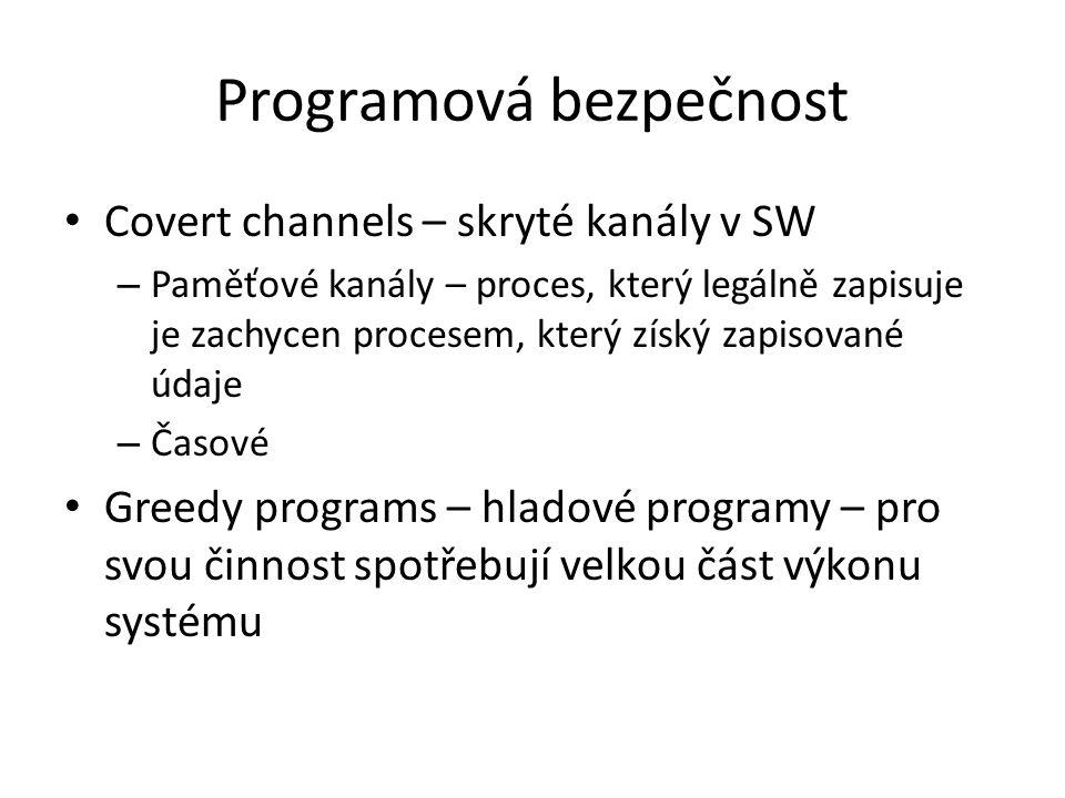 Programová bezpečnost