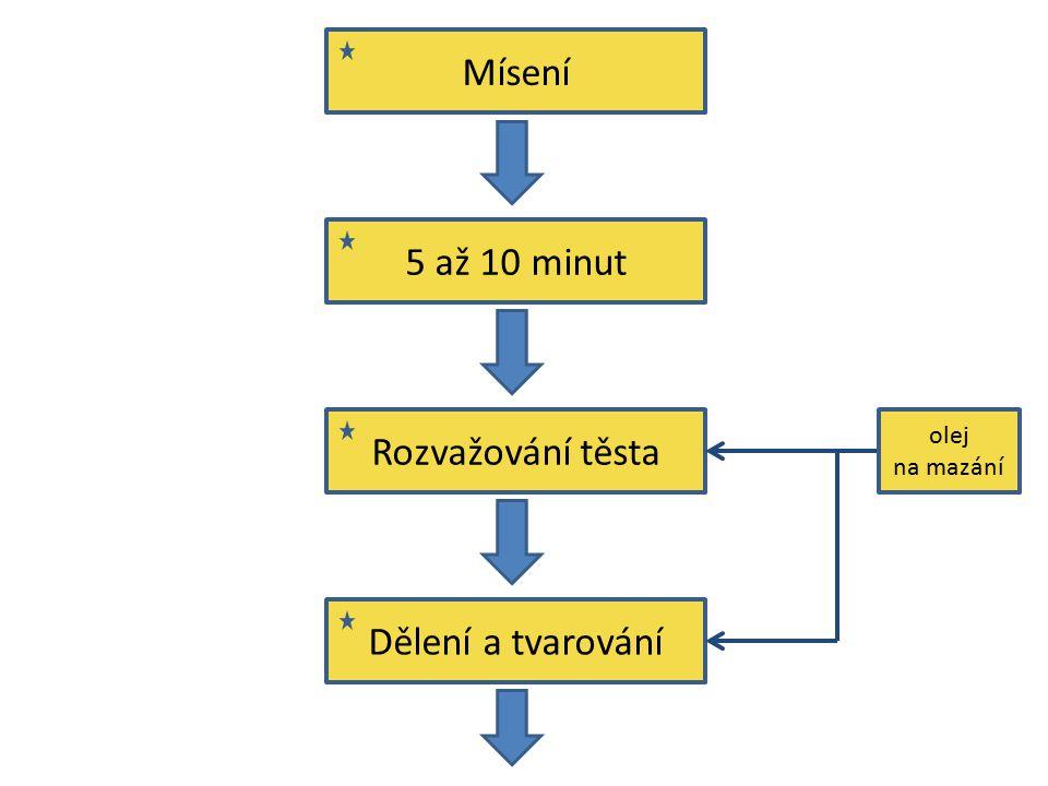 Mísení 5 až 10 minut Rozvažování těsta Dělení a tvarování