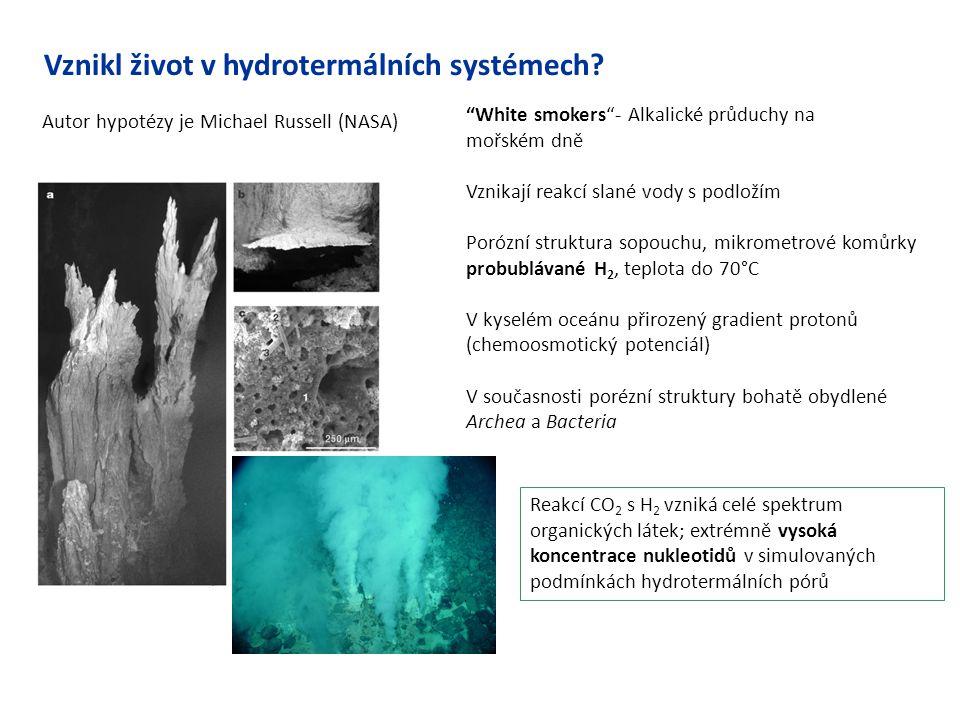Vznikl život v hydrotermálních systémech