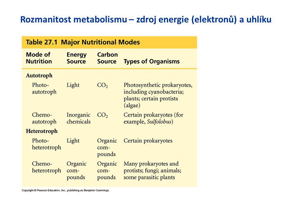 Rozmanitost metabolismu – zdroj energie (elektronů) a uhlíku
