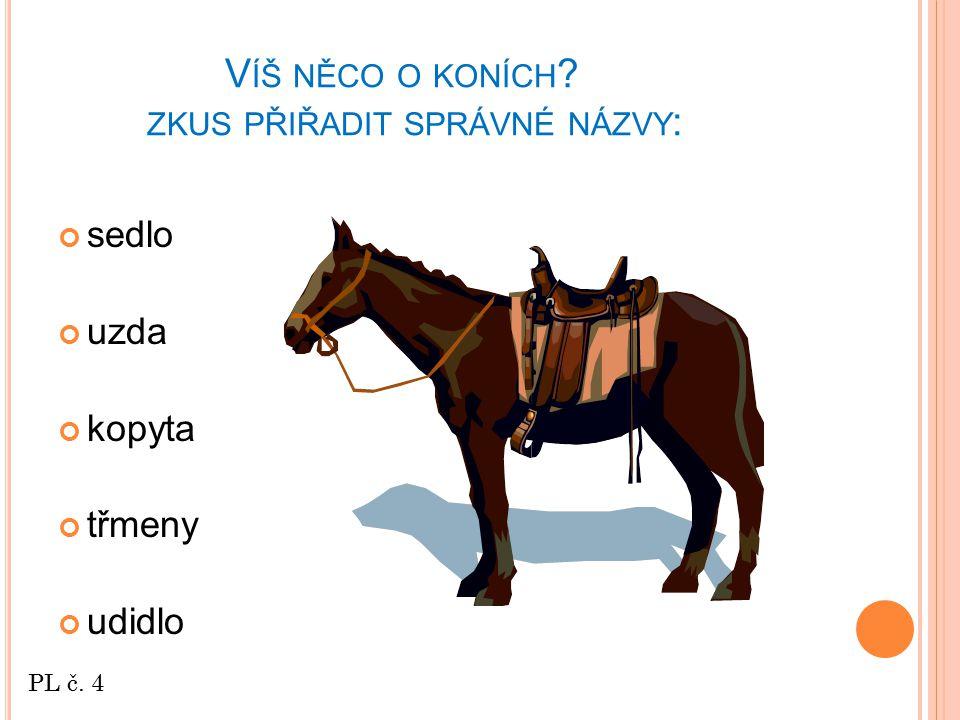 Víš něco o koních zkus přiřadit správné názvy:
