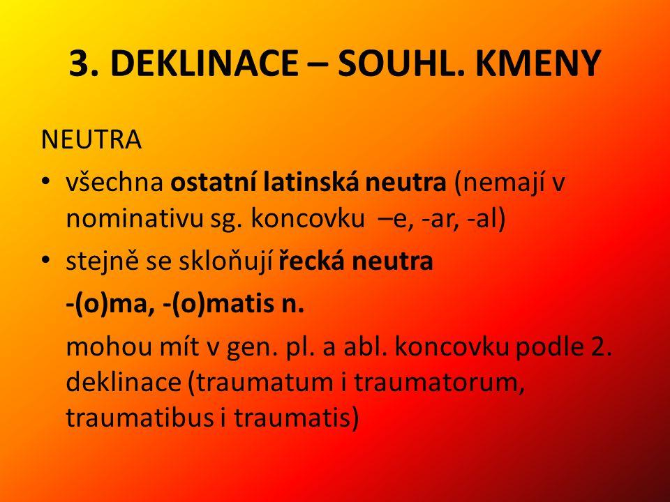3. DEKLINACE – SOUHL. KMENY