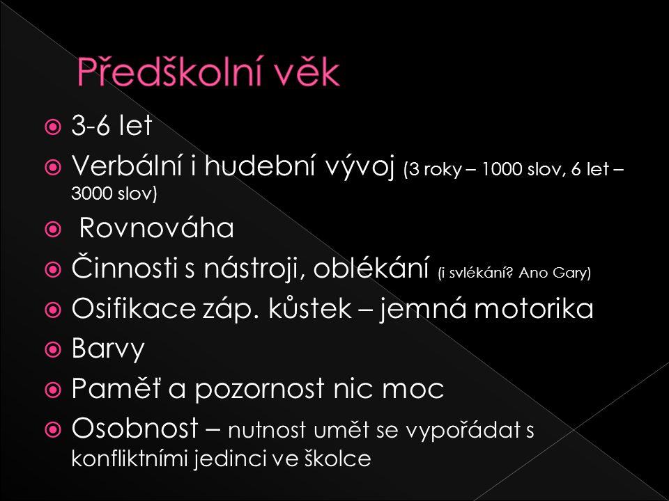 Předškolní věk 3-6 let. Verbální i hudební vývoj (3 roky – 1000 slov, 6 let – 3000 slov) Rovnováha.