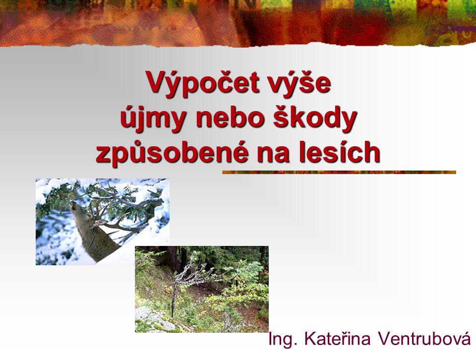 Výpočet výše újmy nebo škody způsobené na lesích