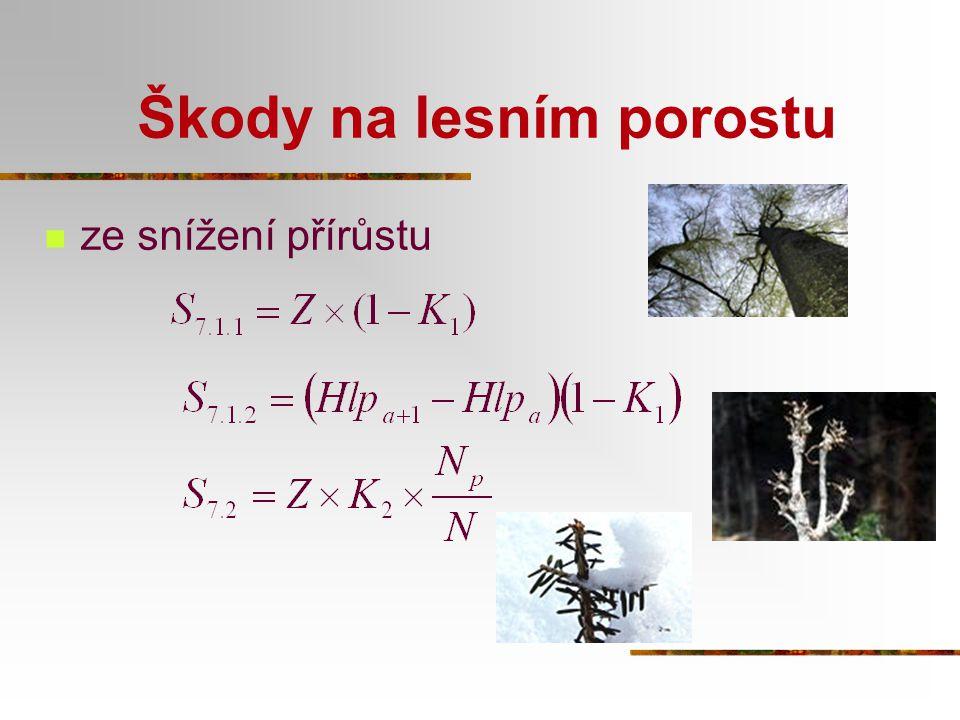 Škody na lesním porostu