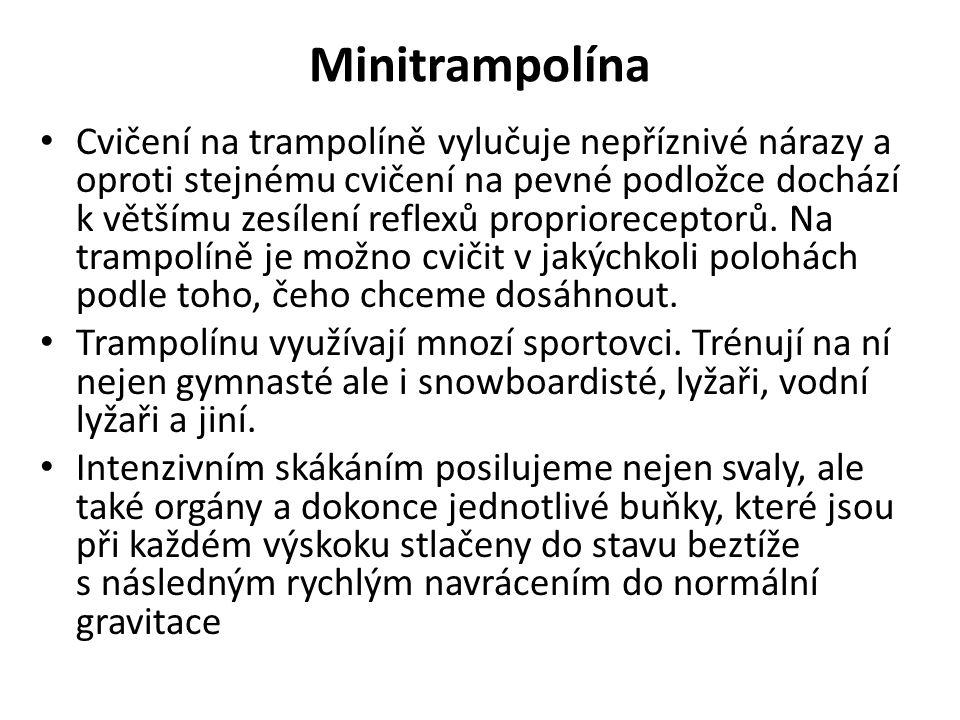 Minitrampolína