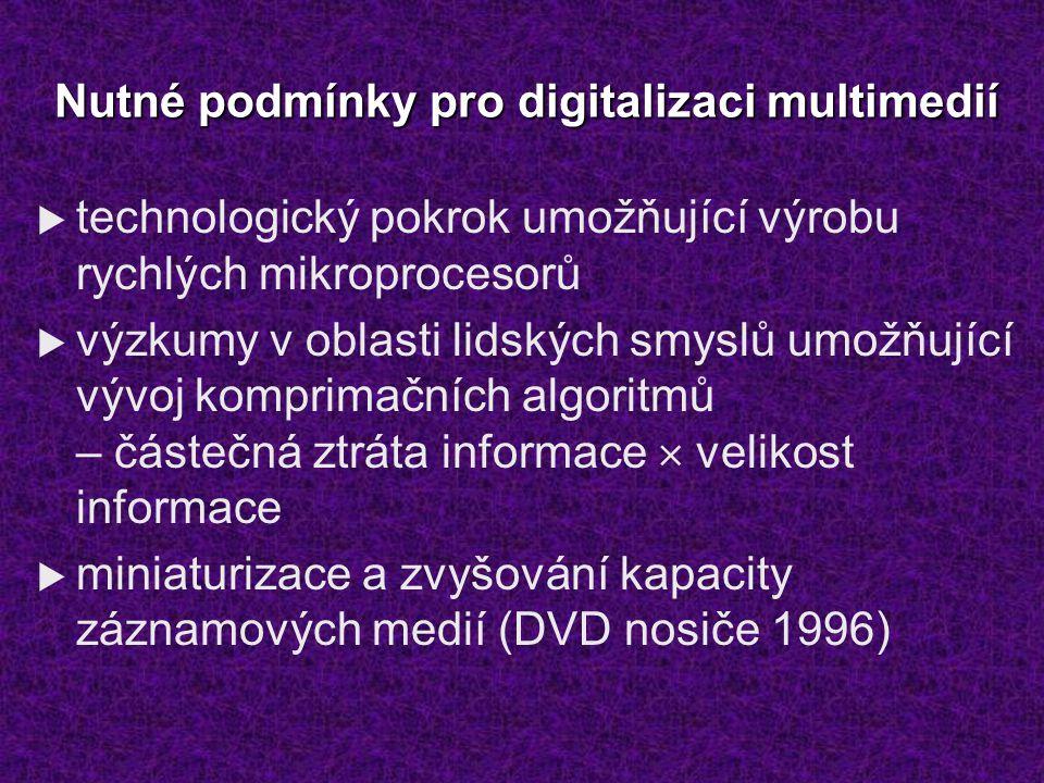 Nutné podmínky pro digitalizaci multimedií