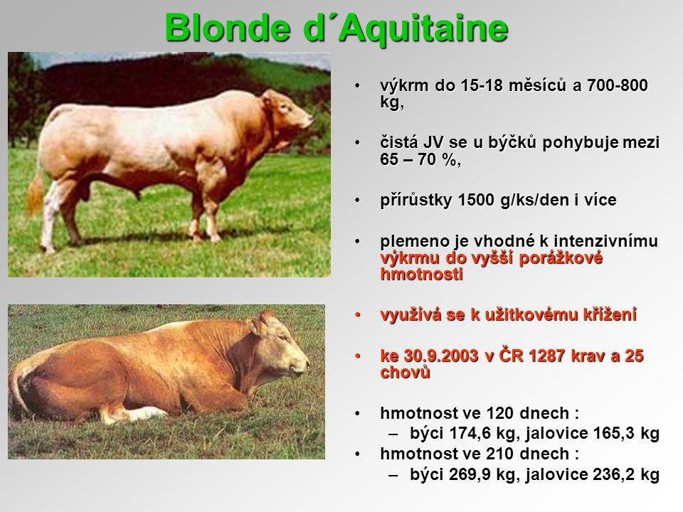 Blonde d´Aquitaine výkrm do 15-18 měsíců a 700-800 kg,