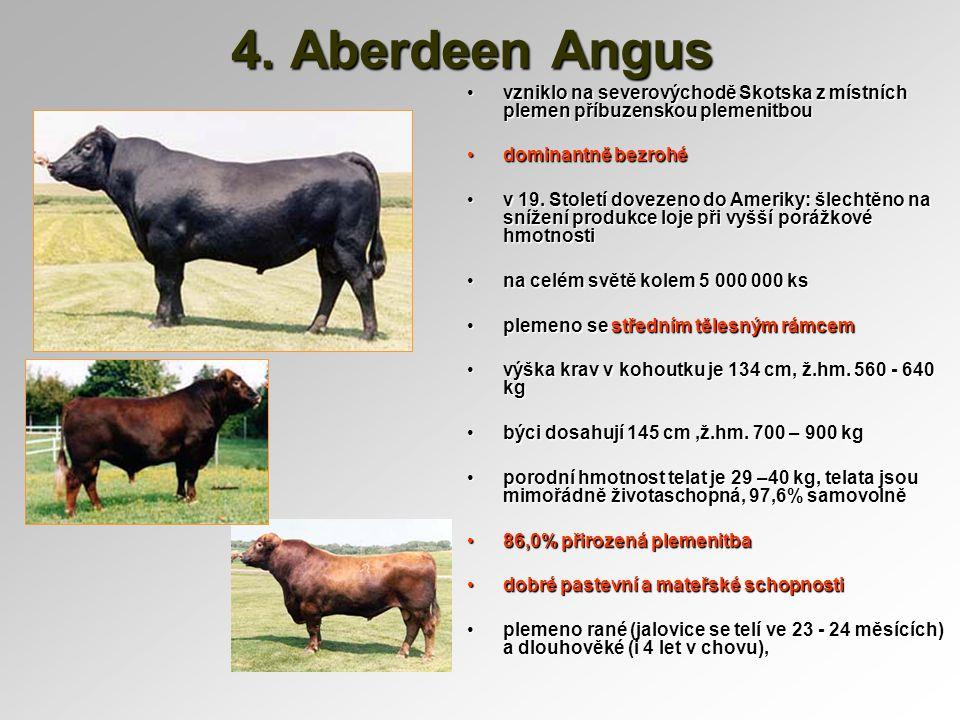 4. Aberdeen Angus vzniklo na severovýchodě Skotska z místních plemen příbuzenskou plemenitbou. dominantně bezrohé.