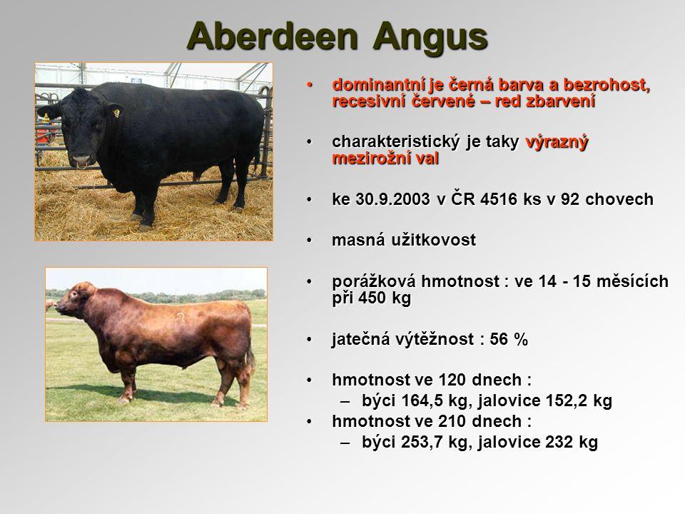 Aberdeen Angus dominantní je černá barva a bezrohost, recesivní červené – red zbarvení. charakteristický je taky výrazný mezirožní val.