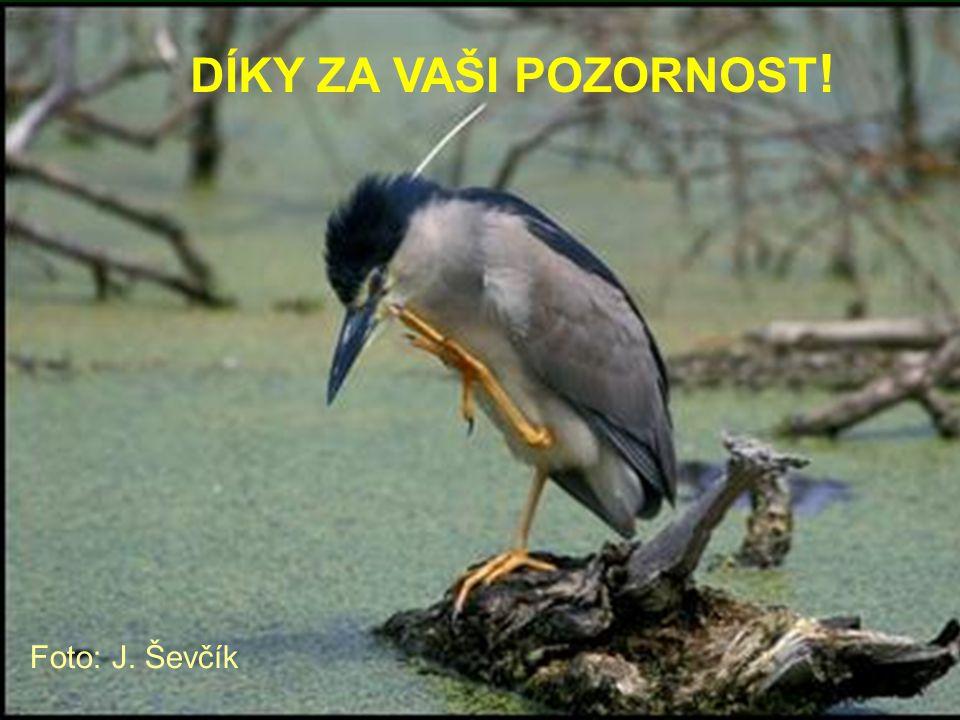 DÍKY ZA VAŠI POZORNOST! Foto: J. Ševčík
