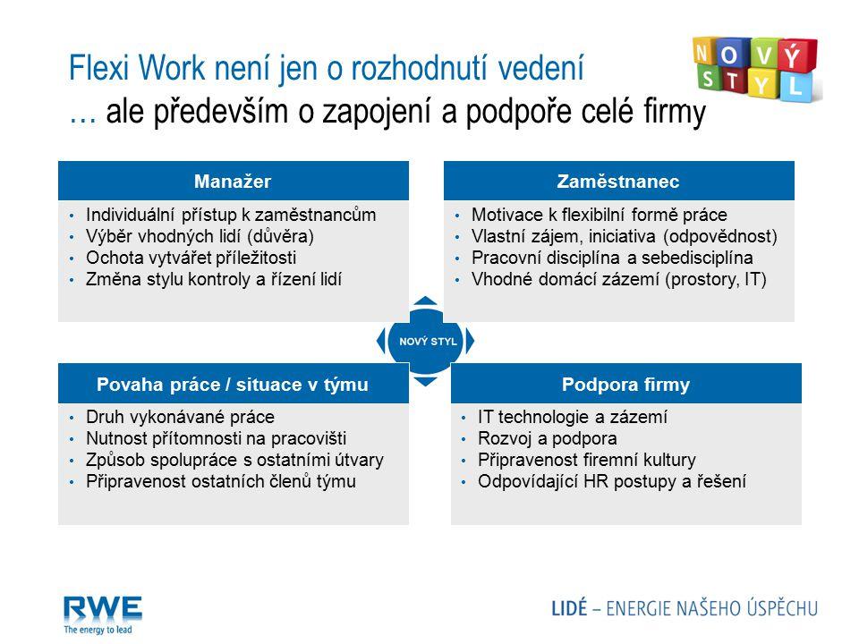 Povaha práce / situace v týmu