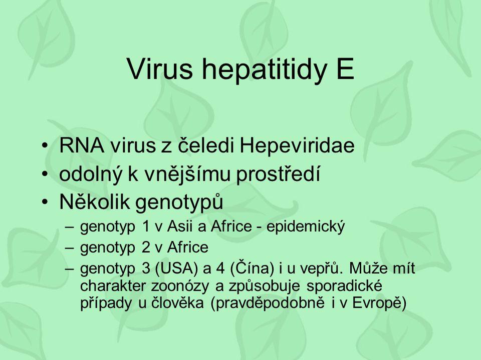Virus hepatitidy E RNA virus z čeledi Hepeviridae