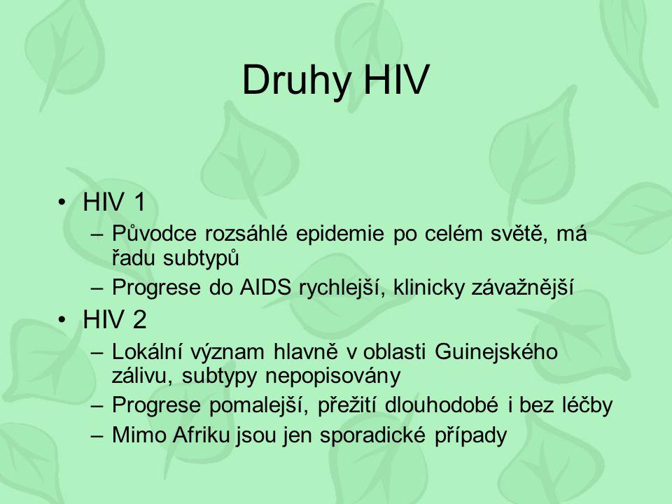 Druhy HIV HIV 1. Původce rozsáhlé epidemie po celém světě, má řadu subtypů. Progrese do AIDS rychlejší, klinicky závažnější.