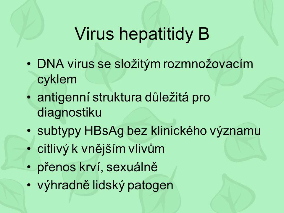 Virus hepatitidy B DNA virus se složitým rozmnožovacím cyklem