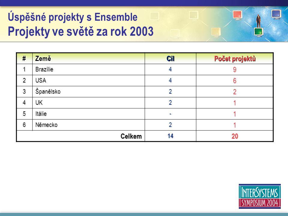 Úspěšné projekty s Ensemble Projekty ve světě za rok 2003