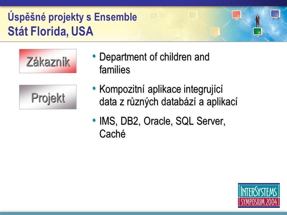 Úspěšné projekty s Ensemble Stát Florida, USA