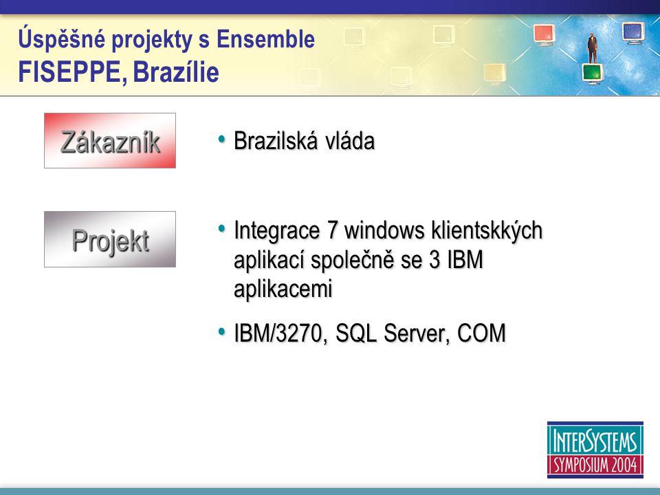 Úspěšné projekty s Ensemble FISEPPE, Brazílie