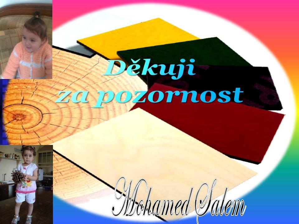 Děkuji za pozornost Mohamed Salem