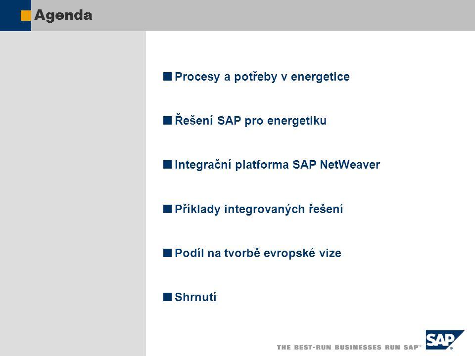Agenda Procesy a potřeby v energetice Řešení SAP pro energetiku