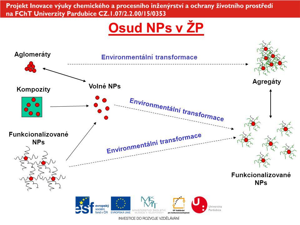 Funkcionalizované NPs Environmentální transformace