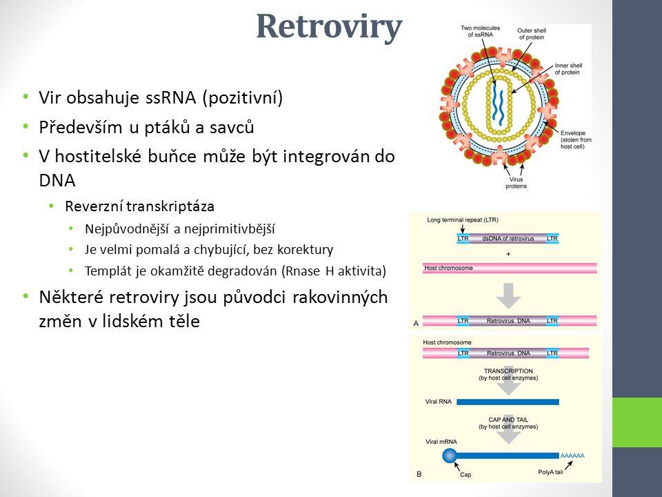 Retroviry Vir obsahuje ssRNA (pozitivní) Především u ptáků a savců