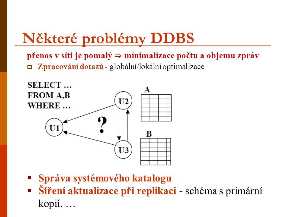 Některé problémy DDBS Správa systémového katalogu