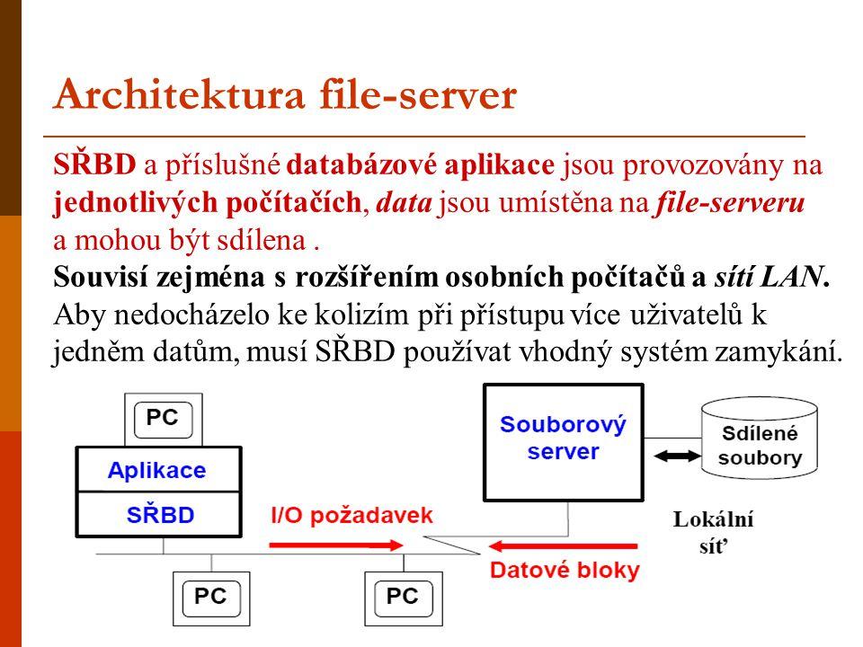 Architektura file-server