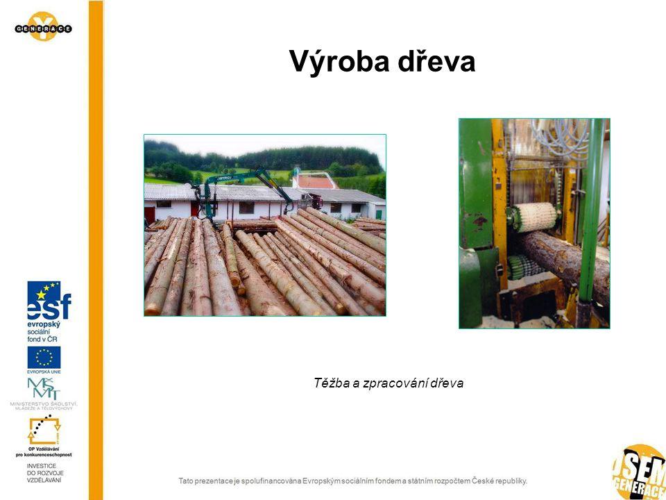 Těžba a zpracování dřeva