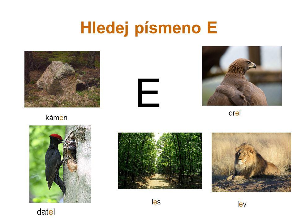Hledej písmeno E E orel kámen les lev datel