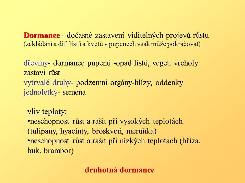 Dormance - dočasné zastavení viditelných projevů růstu (zakládání a dif. listů a květů v pupenech však může pokračovat)