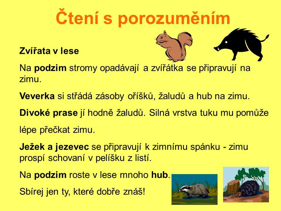 Čtení s porozuměním Zvířata v lese