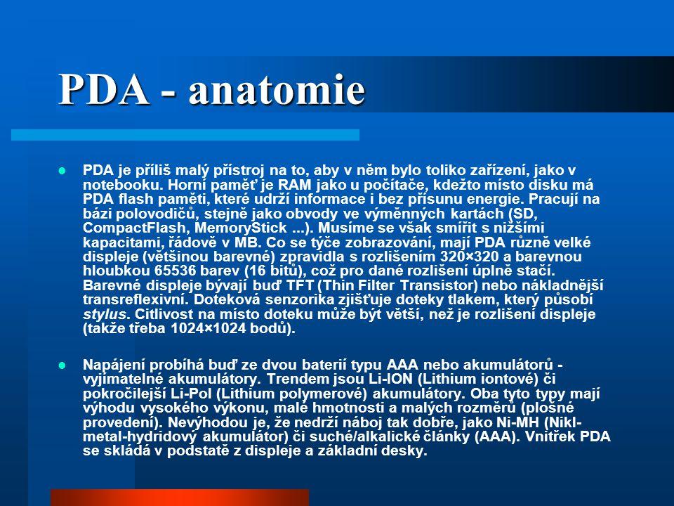 PDA - anatomie