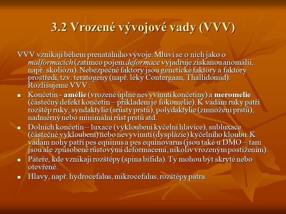 3.2 Vrozené vývojové vady (VVV)