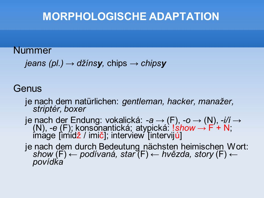 MORPHOLOGISCHE ADAPTATION