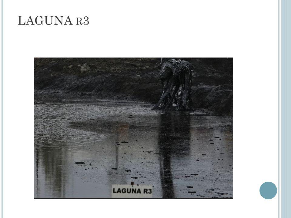LAGUNA r3