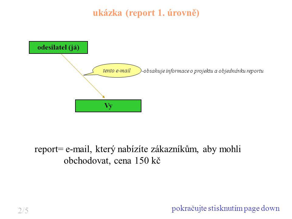 ukázka (report 1. úrovně)