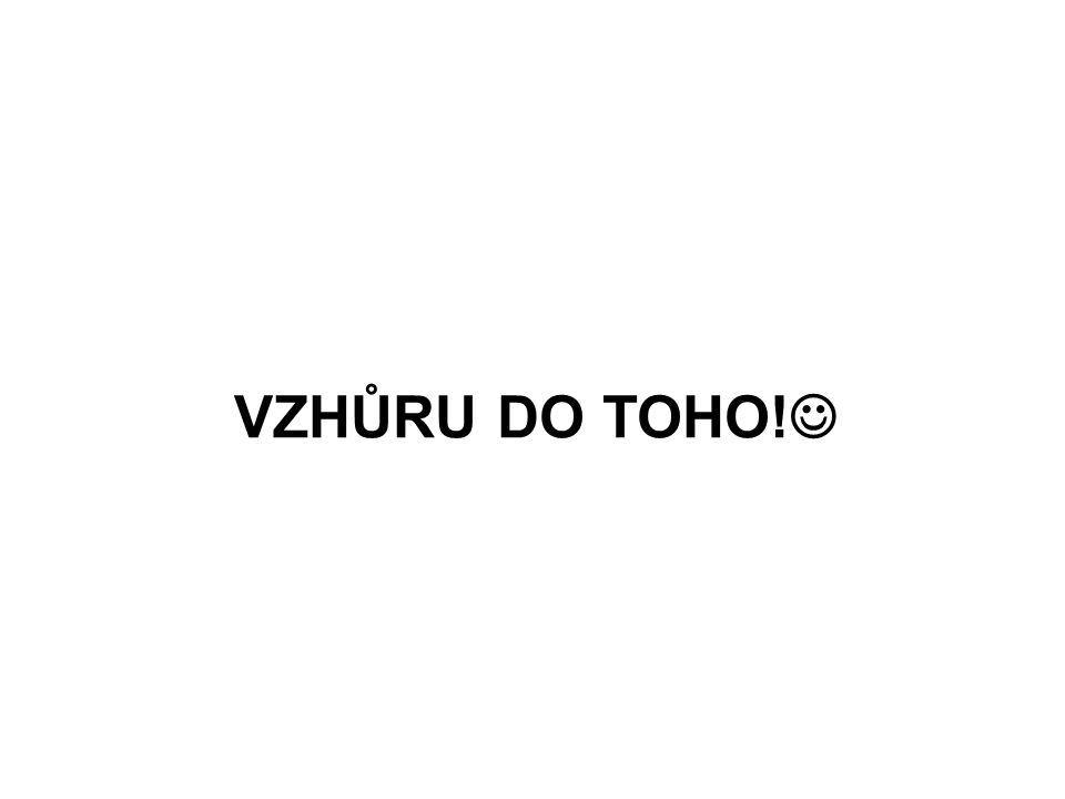 VZHŮRU DO TOHO!