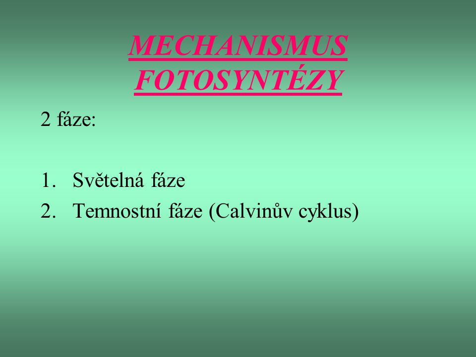 MECHANISMUS FOTOSYNTÉZY