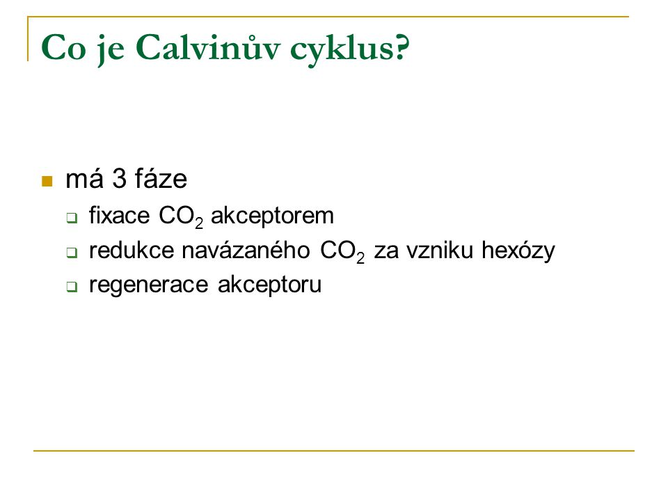 Co je Calvinův cyklus má 3 fáze fixace CO2 akceptorem