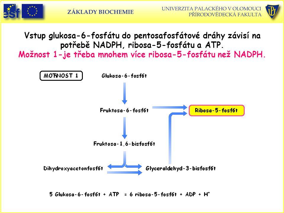 Vstup glukosa-6-fosfátu do pentosafosfátové dráhy závisí na potřebě NADPH, ribosa-5-fosfátu a ATP. Možnost 1-je třeba mnohem více ribosa-5-fosfátu než NADPH.