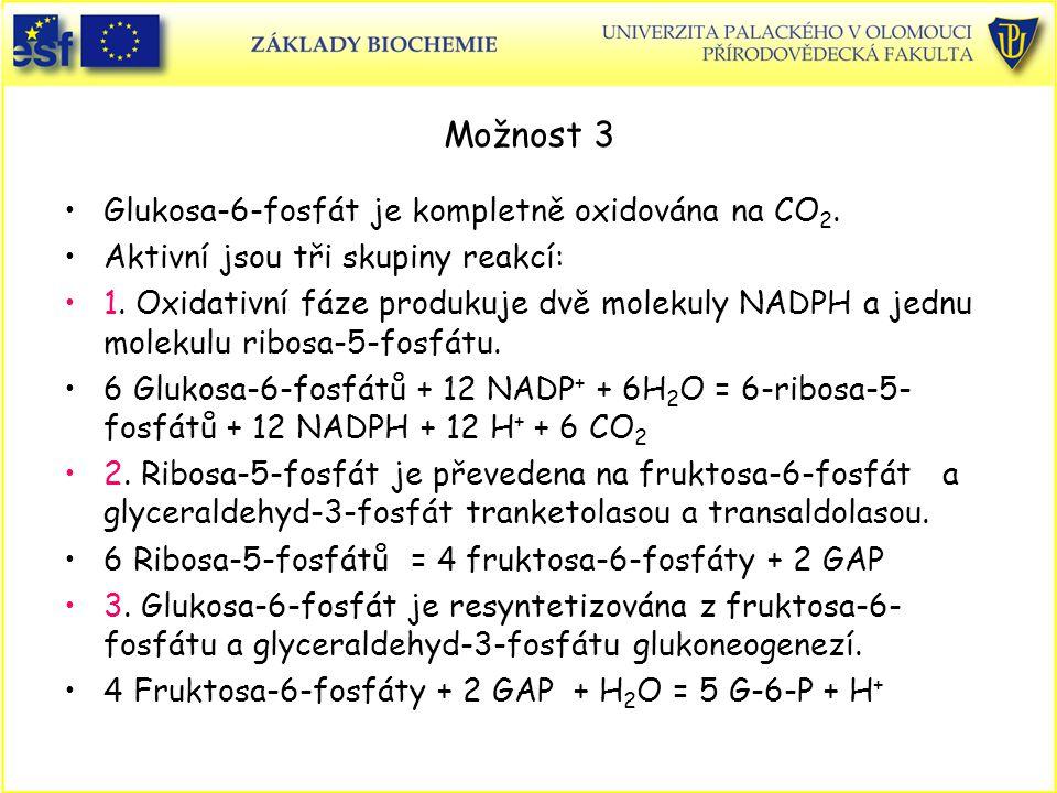 Možnost 3 Glukosa-6-fosfát je kompletně oxidována na CO2.