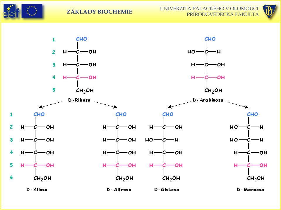 D-Ribosa D-Arabinosa D-Allosa D-Altrosa D-Glukosa D-Mannosa