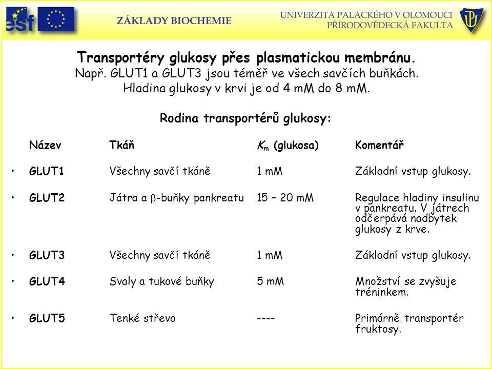 Rodina transportérů glukosy:
