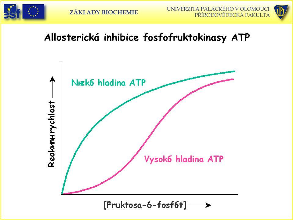 Allosterická inhibice fosfofruktokinasy ATP