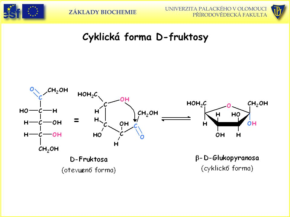 Cyklická forma D-fruktosy